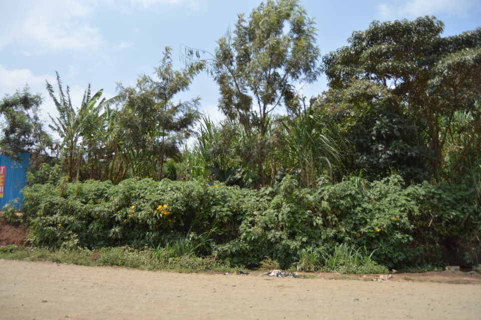 Githurai Vacant Plot For Sale Neptune Shelters Limited
