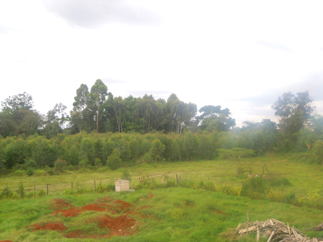 Garden Estate: 1/2 Acre Plot.