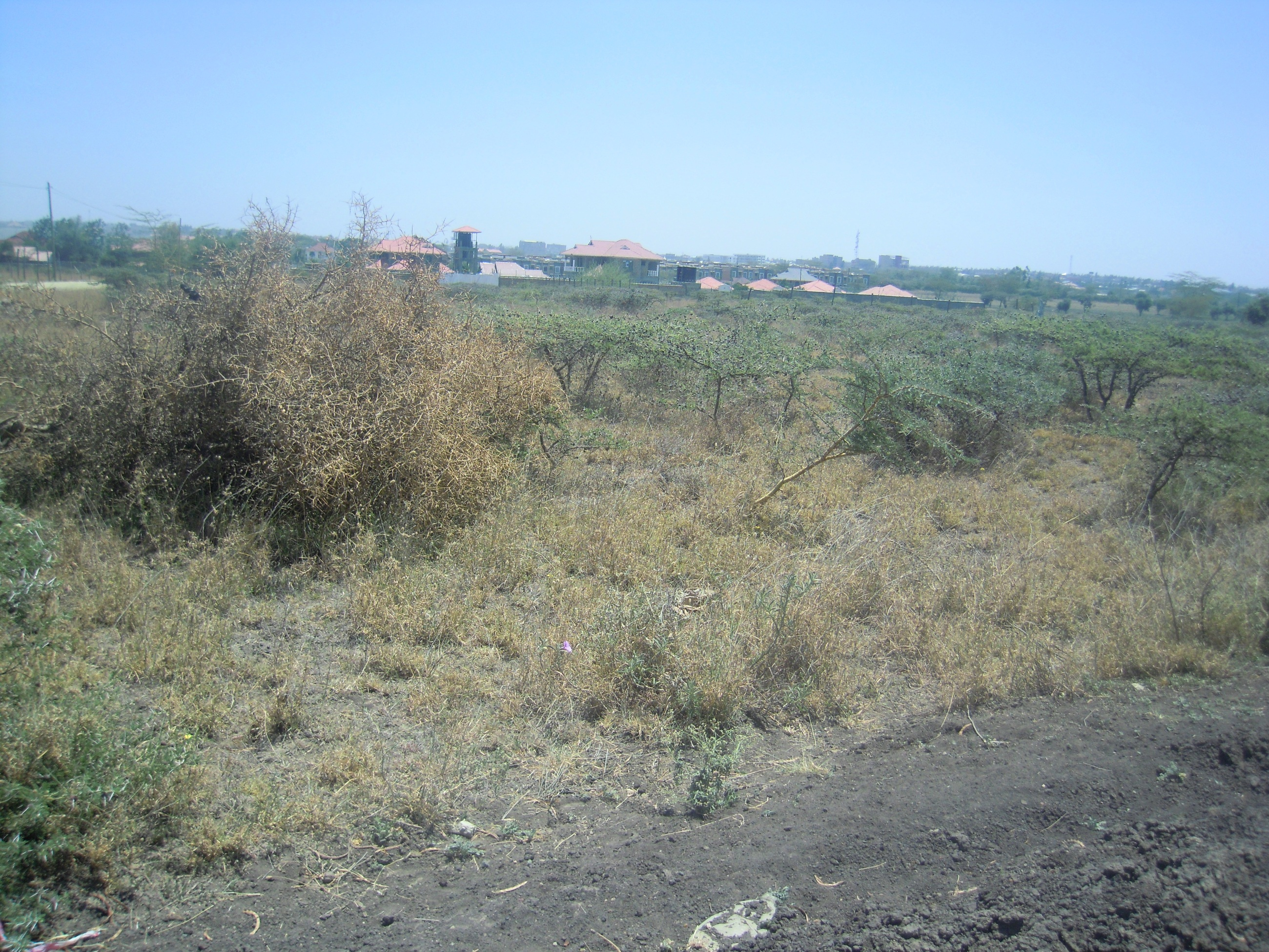 Kitengela Milimani: 1/8th Acre Plots.