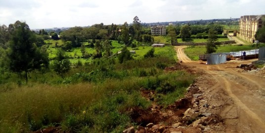 Naivasha Road: Plot.
