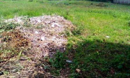 Runda Mumwe: 1/2 Acre.