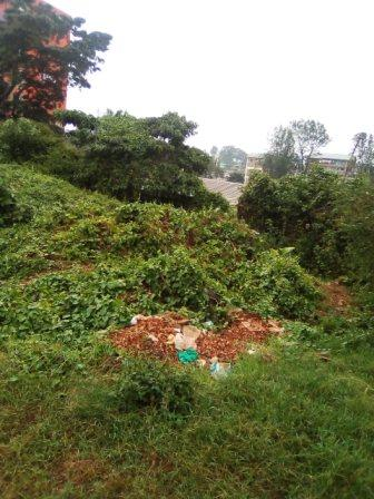 Uthiru: 1/4-Acre Plot.