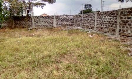 Mwiki: 40×80 feet plot.