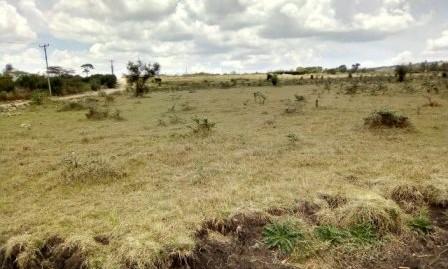 Kiserian: 1/4-acre Plots.
